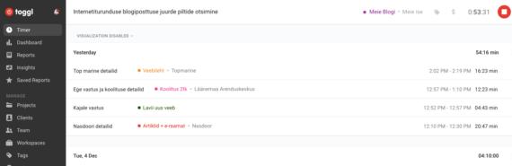 internetiturundus toggl Timo Porval +372 5903 1467 Timo@lavii.ee
